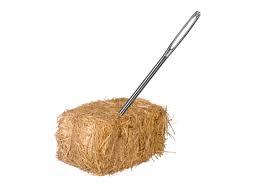 Needle haystack